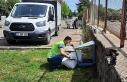 Siverek'te sokak hayvanları unutulmuyor