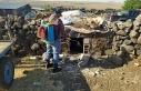Siverek'te haşereyle mücadele sürüyor