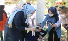 AK Kadınlardan 'Bir Kap Su Bir Kap Mama' Kampanyası