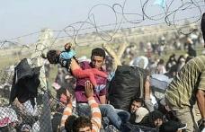 Suç işleyen Suriyeliler gönderiliyor...