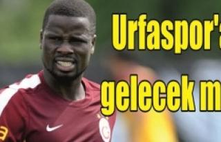 Şanlıurfaspor'dan flaş Eboue açıklaması