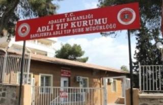 10 PKK'lının cenazesi Urfa'ya getirildi