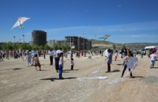 Karaköprü'de uçurtma şenliği düzenlendi