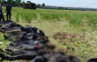 PKK'ya Nusaybin'de çok ağır darbe!