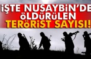 Nusaybin'de kaç terörist öldürüldü?