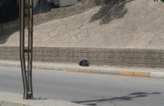 Urfa'da polis alarma geçti