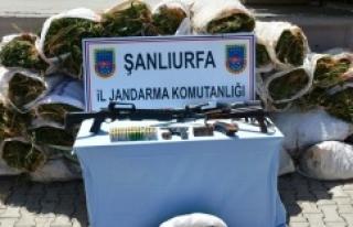 Urfa'da dev operasyon
