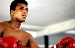 Urfa'da dünyaca ünlü boksöre vefa mesajı