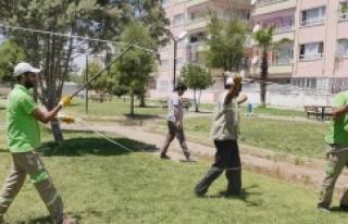 Haliliye'de sinekle mücadele sürüyor