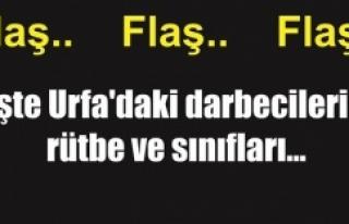 Urfa'da kaç darbeci gözaltına alındı?