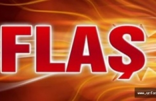 Flaş… Urfa'da 29 kişi tutuklandı
