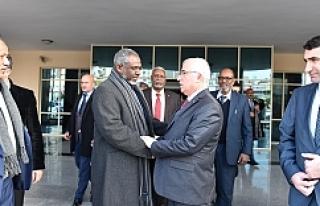 Sudan heyeti Urfa'ya çıkarma yaptı