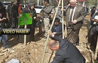 Urfa'da 'yeşil' seferberliği başlatıldı