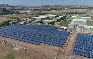 Şanlıurfa yenilenebilir enerjide merkez oluyor