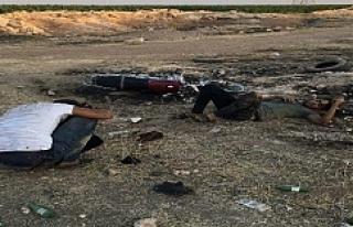Urfa'da üzücü görüntü!