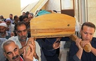 Urfa'da maganda kurbanı oldu