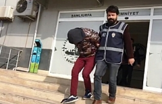 Urfa'da Kapkaç ve Hırsızlığa 5 Tutuklama