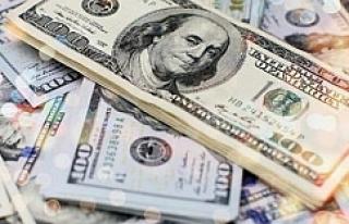Ucuz Dolar şebekesi çökertildi
