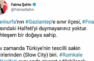 Fatma Şahin'in twiti Urfalıları kızdırdı!