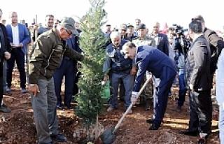Erdoğan telekonferansla katıldı ağaç diktiler