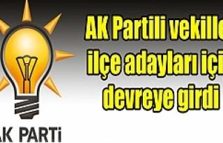 Erdoğan Urfa'ya el attı...