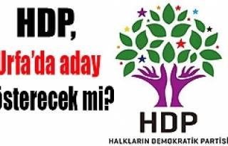 HDP'den Urfa için flaş karar...