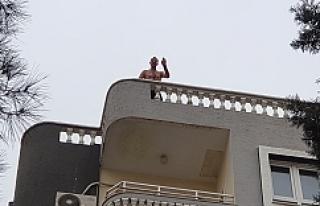 Urfa'da intihar girişimi...