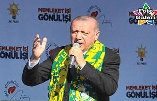 Başkan Erdoğan Urfa'da önemli mesajlar verdi
