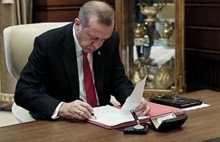 Erdoğan imzaladı! 11 üniversiteye…