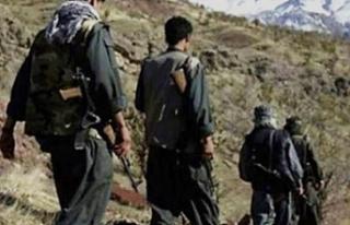 Teröristler bir bir anlattı! PKK çözüldü