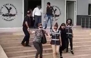Urfa'da fuhuş operasyonu