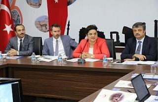 Sağlık Bakanlığı Urfa'da toplantı yaptı