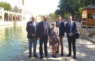 AB Uyum Komisyon Başkanı Gülpınar, Urfa'da...
