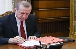 Erdoğan'dan kritik imza! Çok sayıda isim görevden...