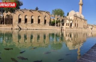 Urfa'da eşsiz güzellik...