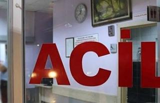 Viranşehir'de köpek saldırısında yaralanan...