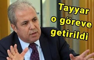 Cumhurbaşkanı'ndan Şamil Tayyar'a önemli...