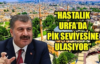 Bakan Koca'dan flaş Urfa açıklaması...