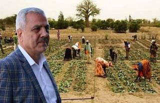 Peltek, çiftçilere 'destek olunsun'
