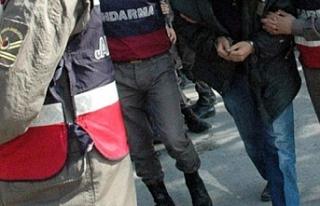 Jandarma Urfa'da yakaladı...