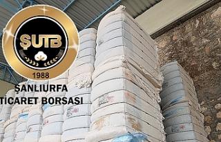 Urfa Borsası pamuğun fiyatını belirledi