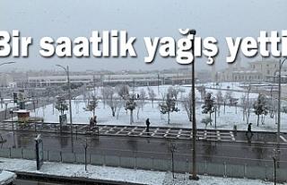 Urfa'da yağan kar beyaza bürüdü