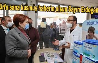 Urfa'ya gelen Akşener'den flaş açıklamalar!