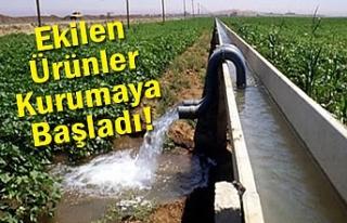 Culap Bölgesinde çiftçiler isyanda!