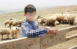 Kör kurşun 12 yaşındaki çobanın hayatına mal...