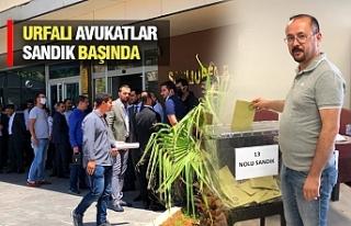 Baro Seçimlerinde Son Durum