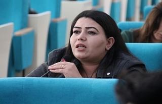 Urfa'da BŞB meclis üyesi tutuklandı