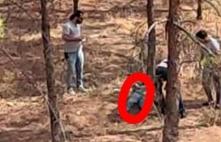 Urfa'da ormanlık alanda ceset bulundu