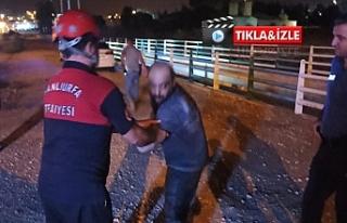 Urfa'da gece yarısı kurtarma operasyonu!