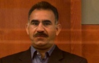 Abdullah Öcalan: İmralı'dan önce...